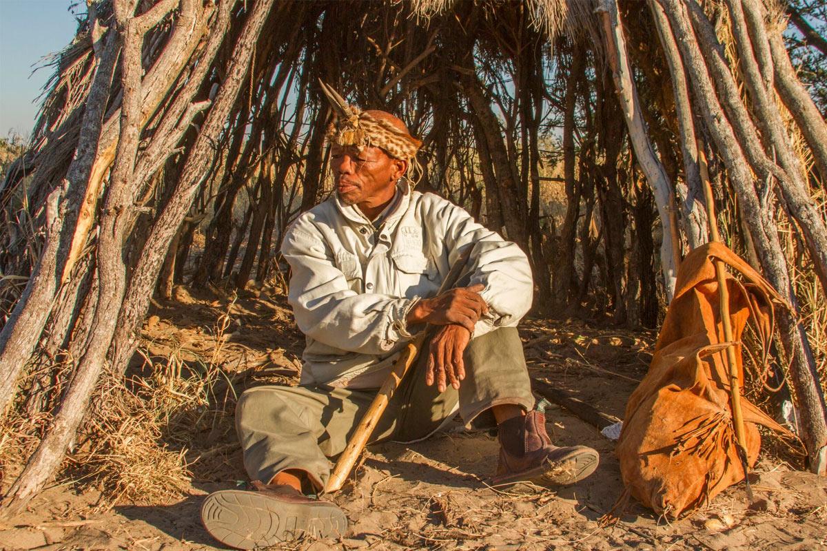 Family Safaris, Botswana Safari